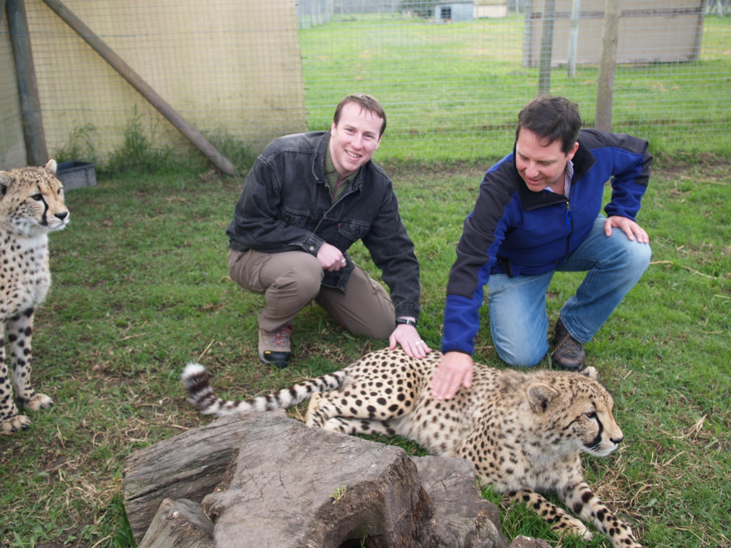 Cheetahs Julius Kyle