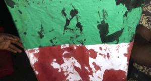 BREAKING: Blood of #EndSARS Protesters Stains Nigerian Flag As Suspected Soldiers Shoot Peaceful Demonstrators 2