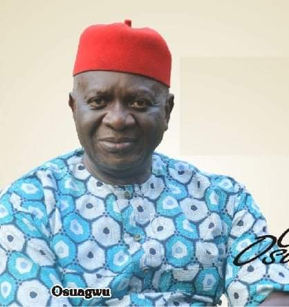 Ọhaneze President: 9 More Igbo Groups Back Osuagwu