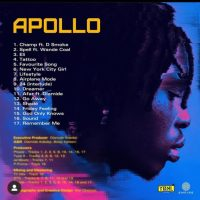 Download  : Fireboy DML – Apollo (Full Album)