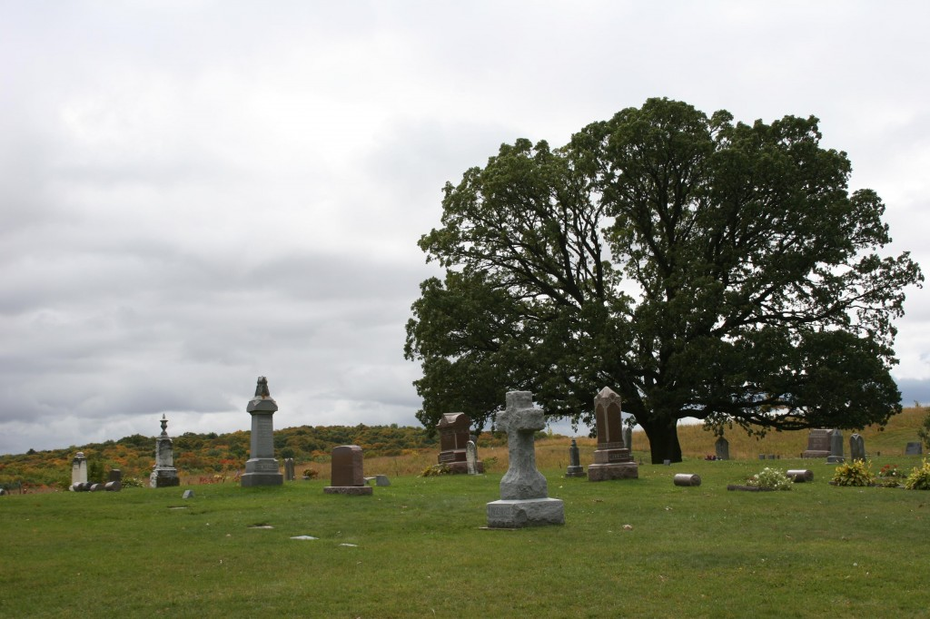 The Valley Grove Church Cemetery near Nerstrand Big Woods State Park is especially picturesque during the fall.