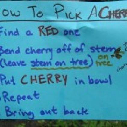 How to Pick a Cherry