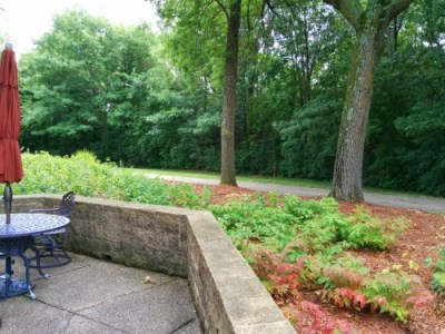 Nice walk/bike path along the back patio of the cafeteria.