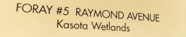 Foray #5 Raymond Avenue