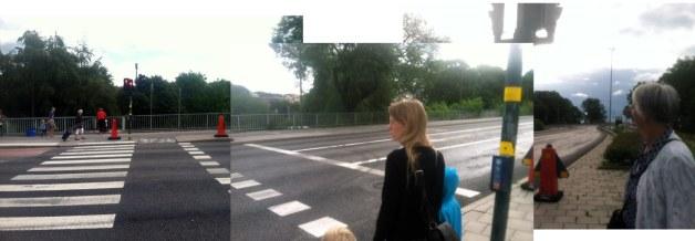 stockholm-freeway-crosswalk