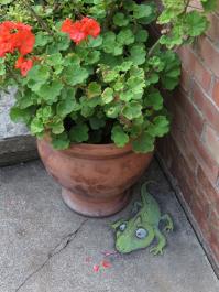 flowerpot_lizard_petals_lores