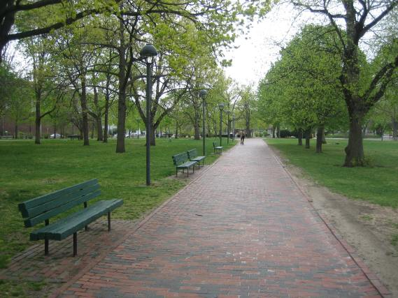 Cambridge Commons, Elegant Entrance Paths for Specific and Casual Visitors Alike