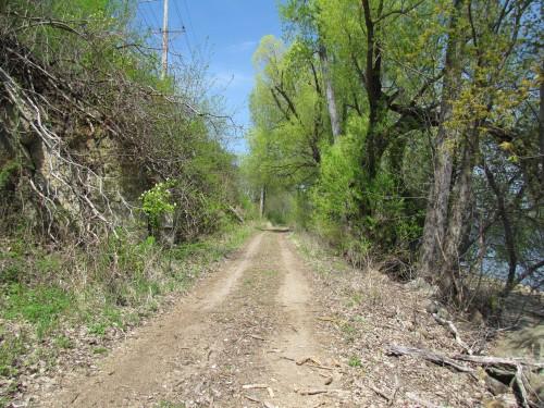 Future trail in Bridgview Park