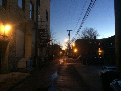 A dense, but residential, Minneapolis alley at dusk.