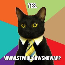 snow emergency cat