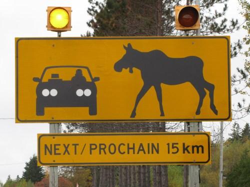 New Brunswick Warning Sign