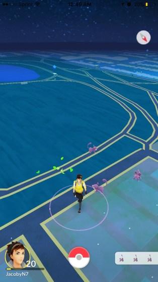 pokemon lake mpls