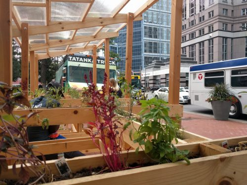 View from inside seating bay, looking down 7th st with view blocked by herbs and a food truck