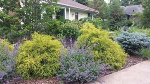 One Last Garden Near the Garden Center (5825 Queen Avenue South)
