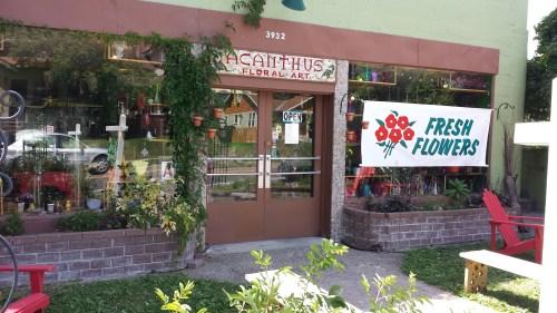 Acanthus FLoral Art, 3932 Cedar Avenue South