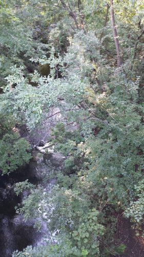 Bassett Creek at Cedar Lake Rd