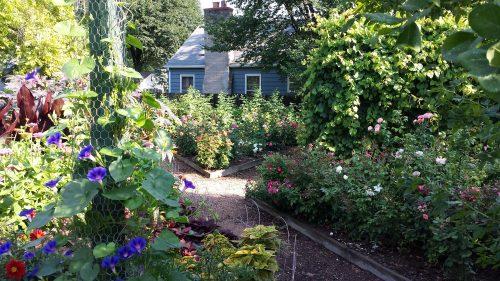 The Bryant Unity Development (BUD) Garden
