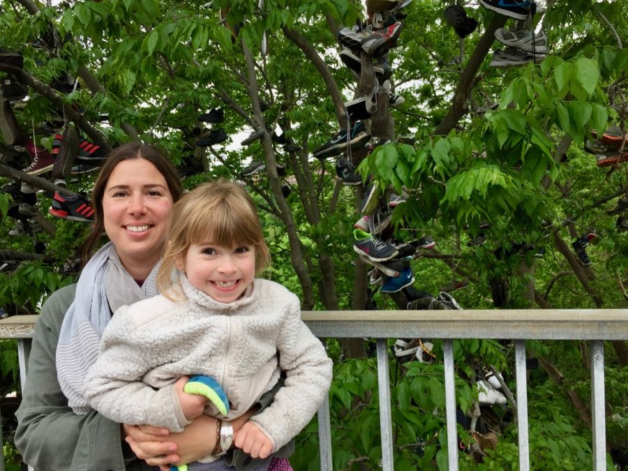 The Shoe Tree at the University of Minnesota