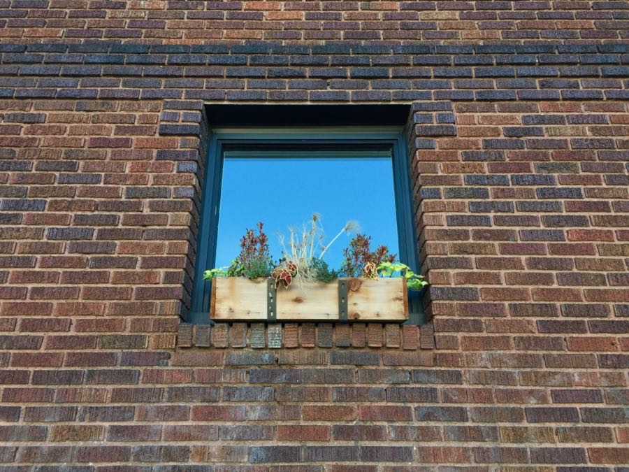 Square window with flower box