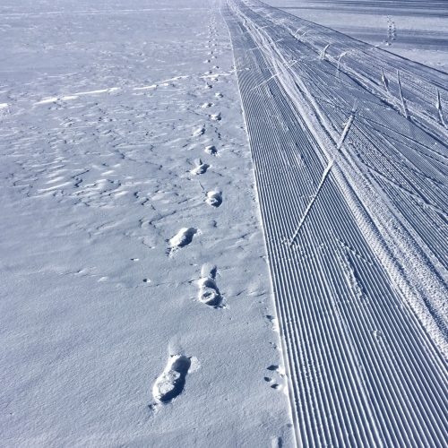 Photo of flat shallow snow to the horizon, a groomed cross country ski trail on the right and a set of footprints leading up the the photographer's point of view on the left.