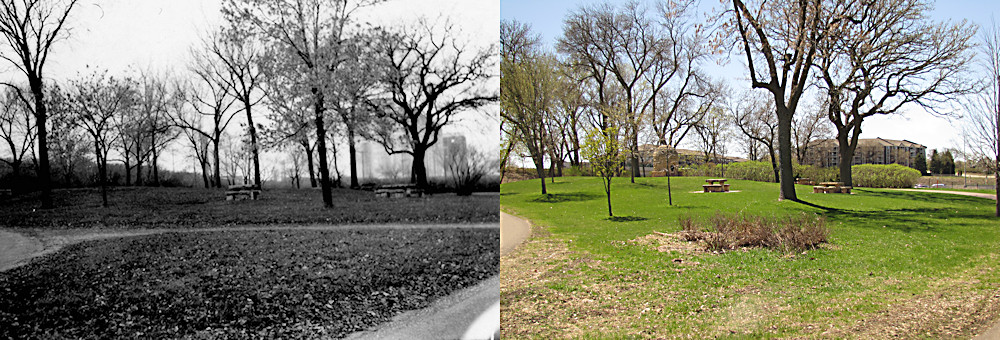 St. Louis Park Lilac Way Then Now