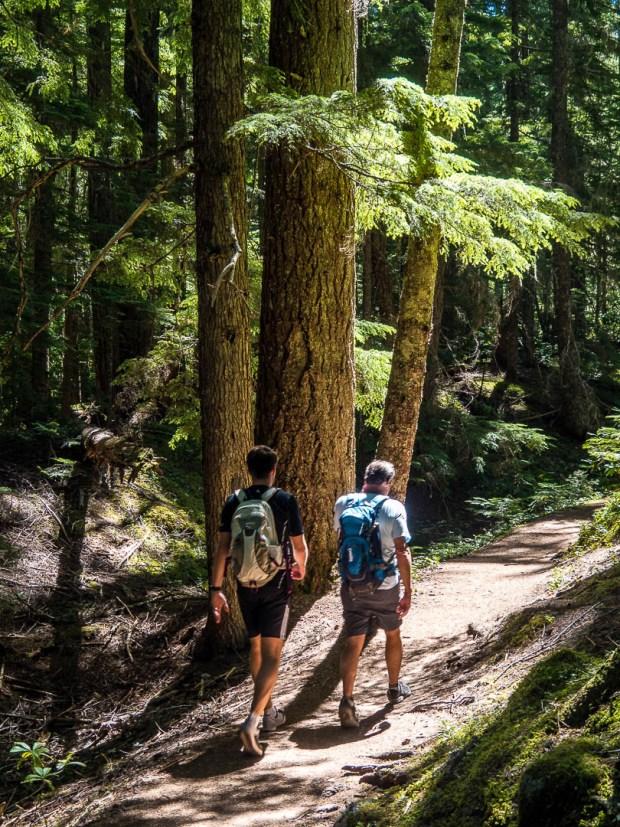 Ramona Falls Hike Mount Hood 02