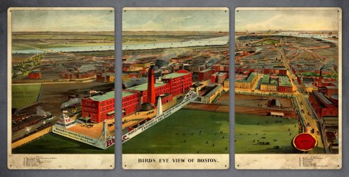Boston Birds Eye Triptych