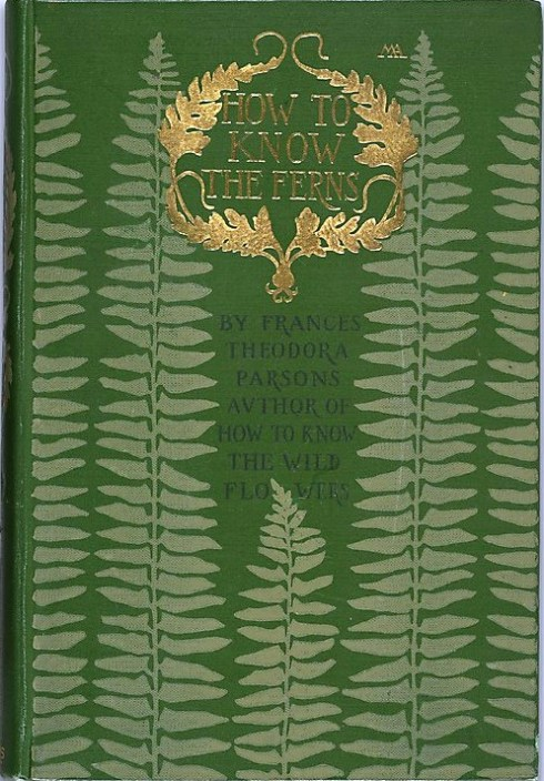 Ferns 1902 Binding by Margaret Neilson Armstrong