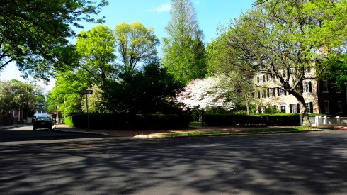 McIntire Park 014