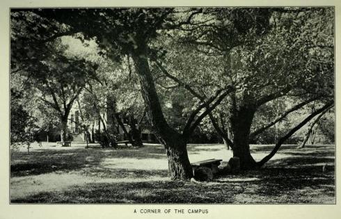SSU campus 1920