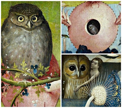 Bosch Owls