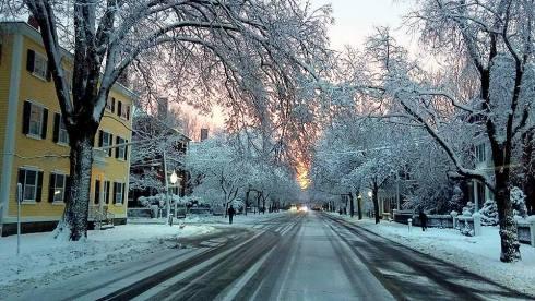 Chestnut Street Pink Bill Raye
