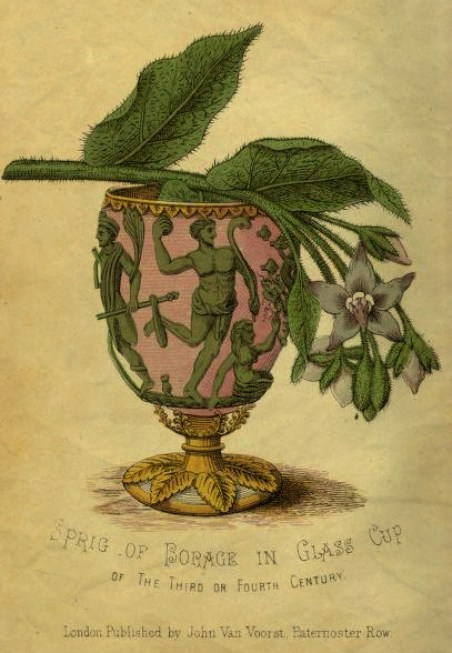 Spring Wine Cups and Their Customs