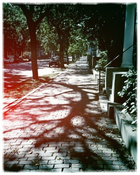 filtered-chestnut-street-2