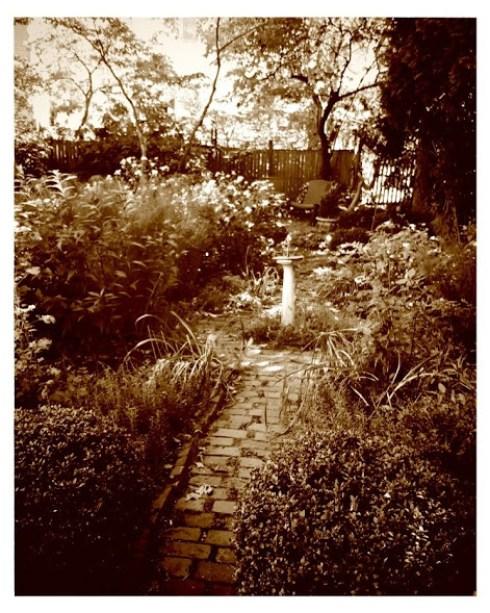 filtered-garden-2