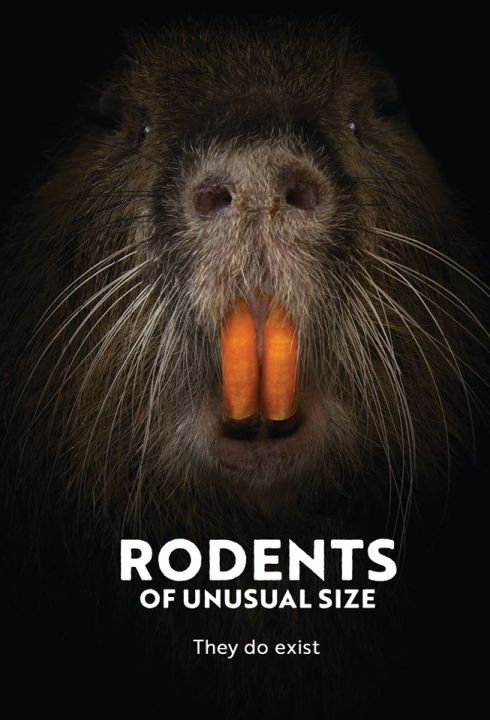 Rodents2