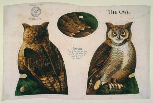 North Adams Arnold Print Work Owl Cooper Hewitt