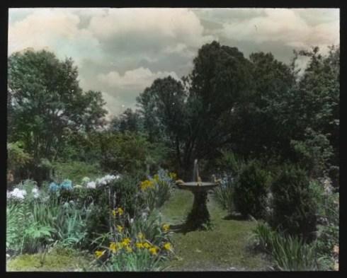 Garden Johnston (2)