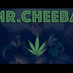 [Video] La Keise Wilson – Mr. Cheeba @LakeiseWilson