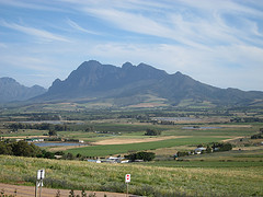Stellenbosch Valley