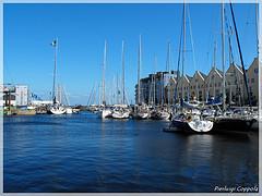 Galway Dock - VOR 1st Day