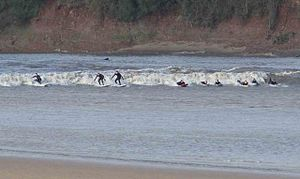 English: Surfers riding the Severn Bore This i...