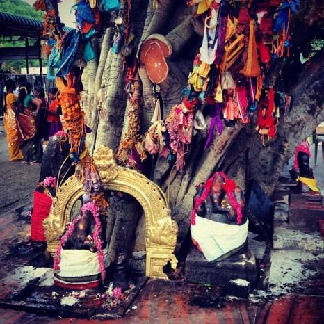 Marudhamalai temple - streettrotter6