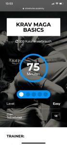 Streetwise Academy Website Krav Maga Franchise Berlin