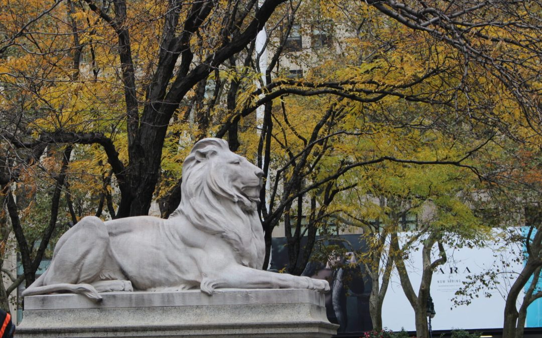 Things To Do In NYC In October & Weather