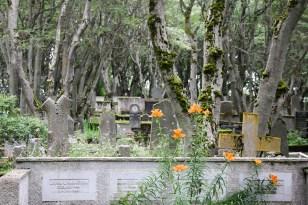 alter Friedhof, Reykjavík,
