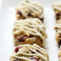 Gluten-Free Vegan Cranberry Bliss Bars {Squares!} (Allergy-Free)
