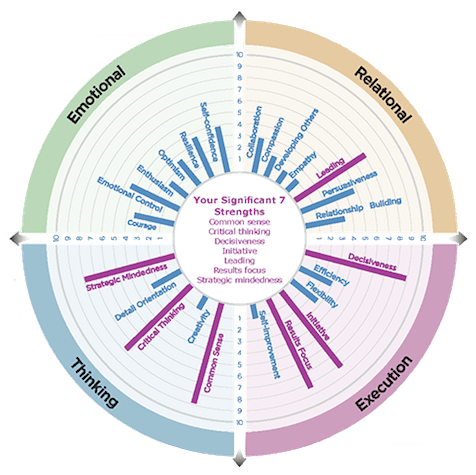 strengths-wheel-transparent-475