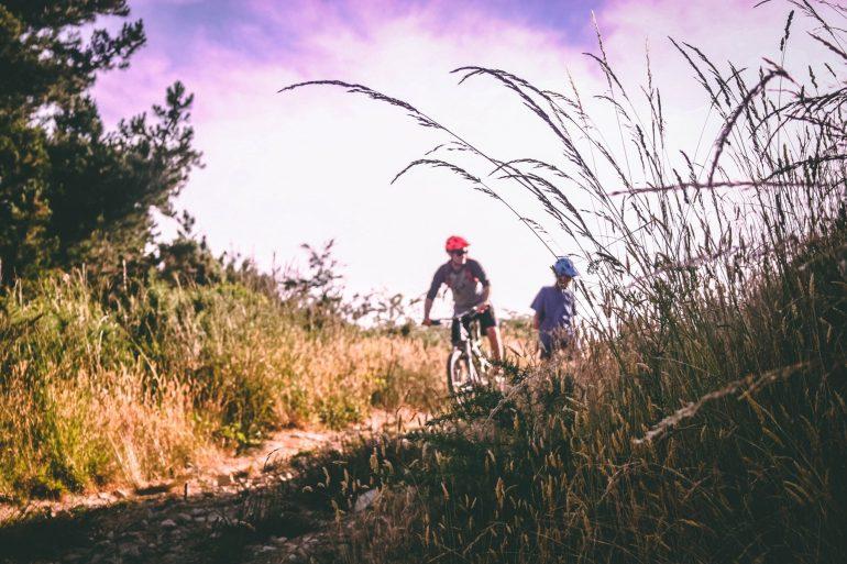 baume-draussen-fahrrad-733741