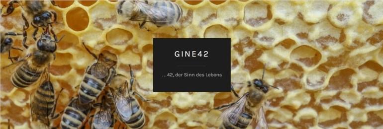 Gine42